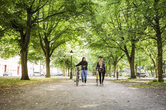 Women walking in park — Stock Photo