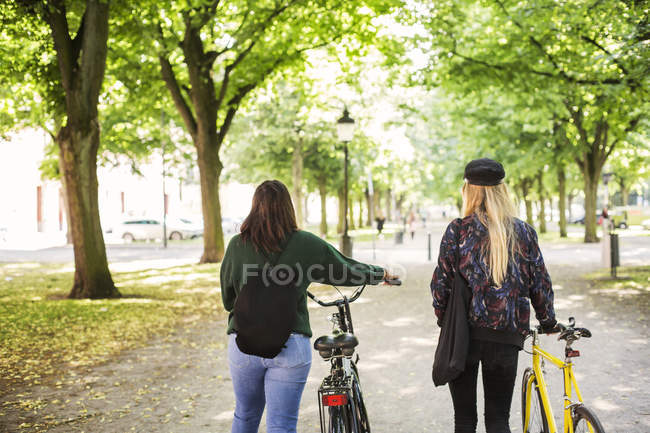 Young women walking in park — Stock Photo