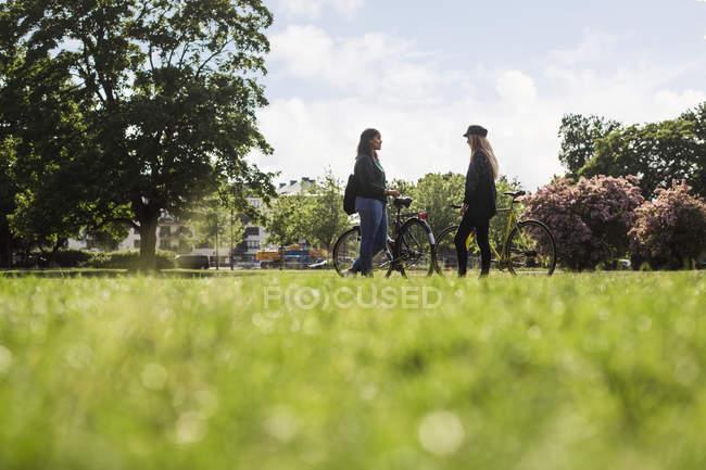 Frauen stehen mit Fahrrädern — Stockfoto
