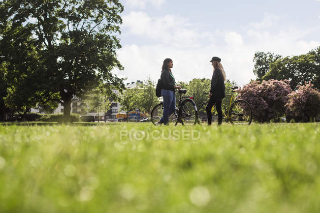 Women standing with bicycles — Stock Photo