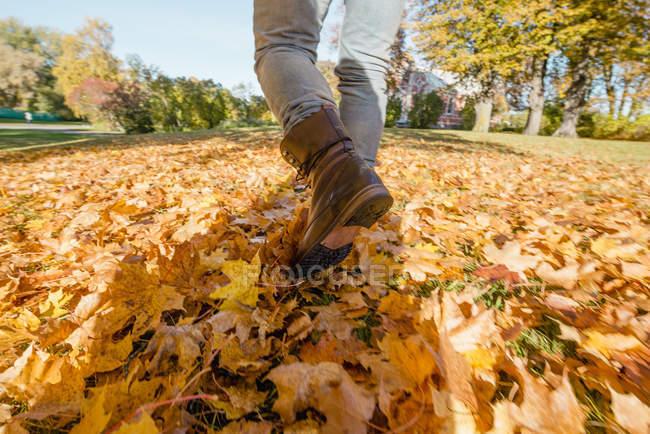 Man walking in fallen autumn leaves — Stock Photo