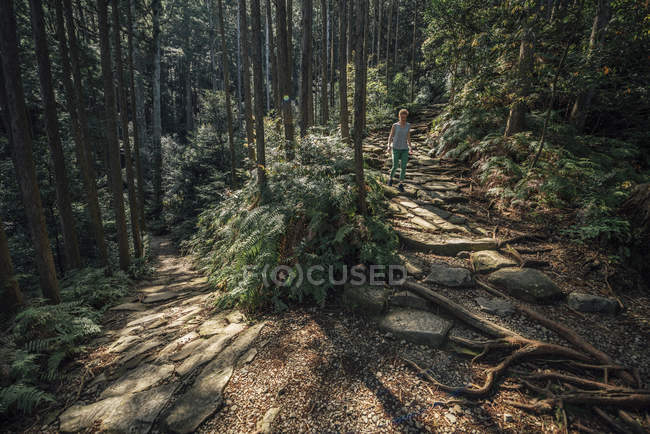 Hiker walking in forest — Stock Photo