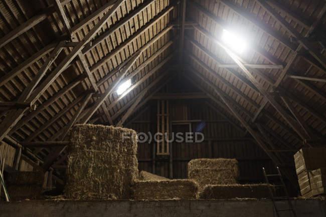 Pagliaio nel fienile rurale — Foto stock