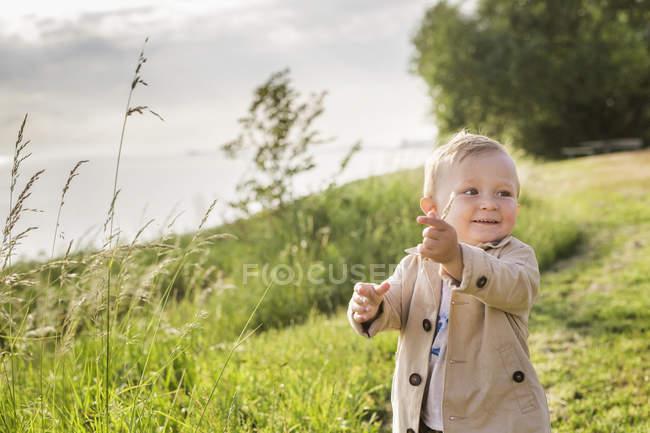 Хлопчик, ходьба на зелений Луці — стокове фото