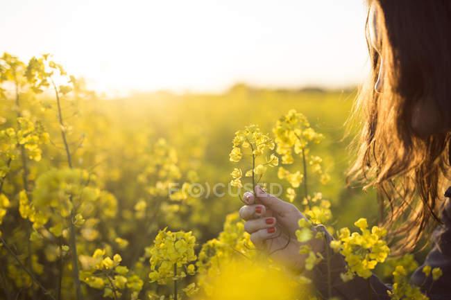 Mujer flor de canola - foto de stock