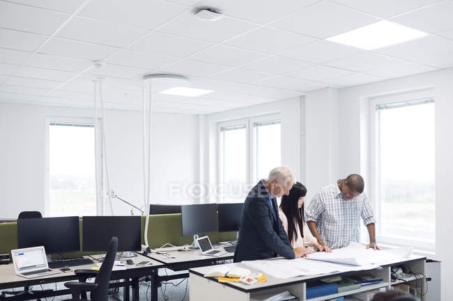 Colleagues looking at blueprint — Stock Photo