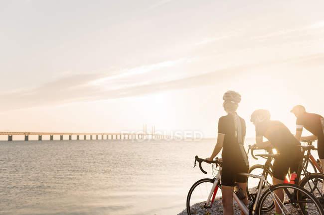 Велосипедисты, глядя на море — стоковое фото