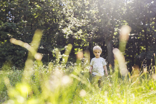 Boy (2-3) standing in meadow during daytime — Stock Photo