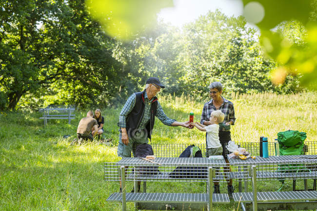 Grandson (2-3) with grandparents by picnic table — Stock Photo