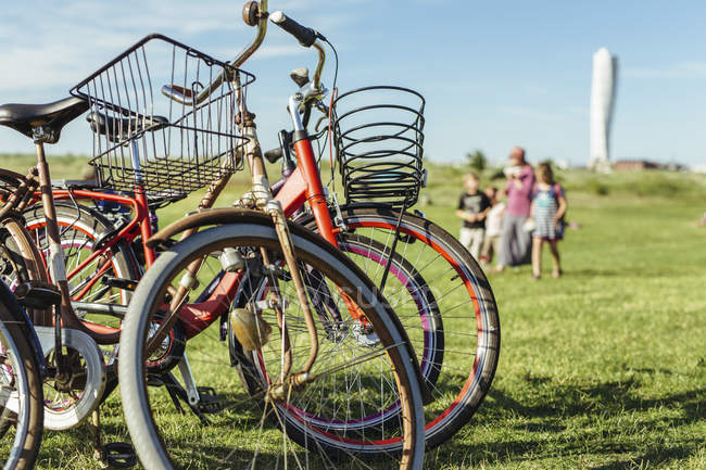 Bicycles on grass and family walking in background — Stock Photo