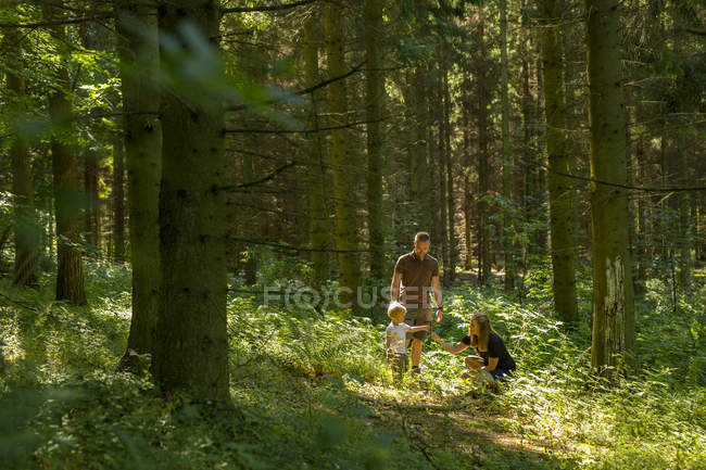 Son (2-3) with parents in forest during daytime — Stock Photo