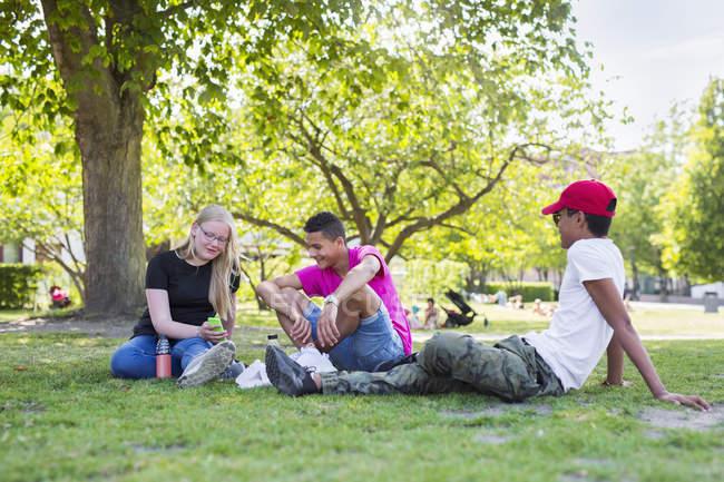 Adolescente e ragazzi adolescenti (14-15) che si siede nel parco — Foto stock