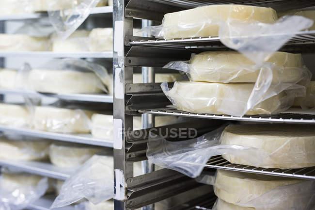 Cheese on rack indoors — Stock Photo