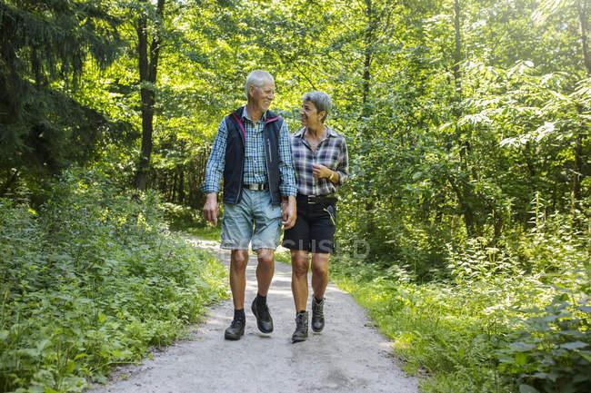 Casal andando na floresta durante o dia — Fotografia de Stock
