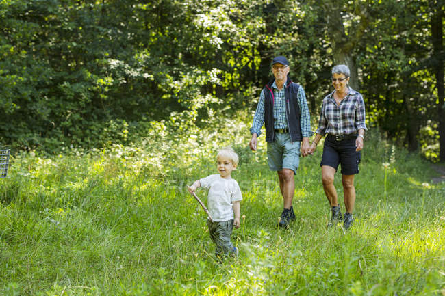 Grandparents walking with grandson (2-3) in forest — Stock Photo