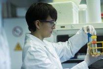 Cientista, examinando o tubo de ensaio com líquido azul — Fotografia de Stock