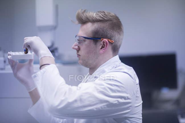 Scientist examining test tubes — Stock Photo