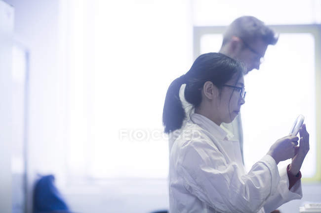 Scientists working at modern laboratory — Stock Photo