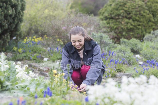Gardener planting flowers in flowerbed — Stock Photo