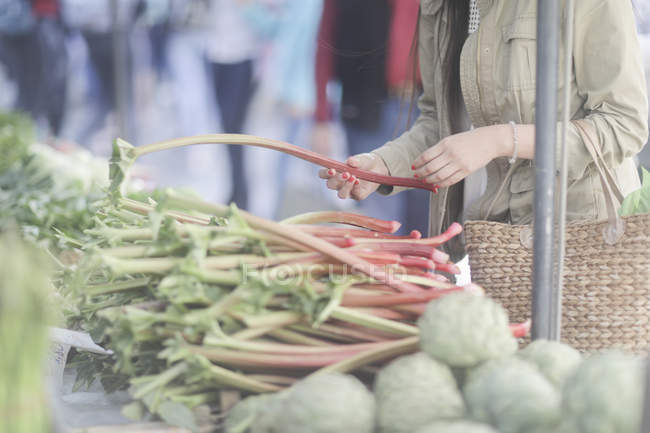 Cropped view of woman holding stalks of rhubarb at marketplace in town. — Stock Photo