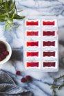 Raspberry lemon verbena popsicles — Stock Photo