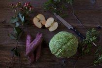 Salade de chou ingrédients — Photo de stock