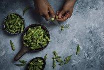 Gombo fresco verde — Foto stock