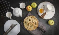 Яблочный пирог на сковородке железа — стоковое фото