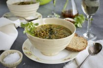 Green Lentil Coconut Soup — Fotografia de Stock