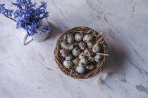 Перепелиних яєць в кошик — стокове фото