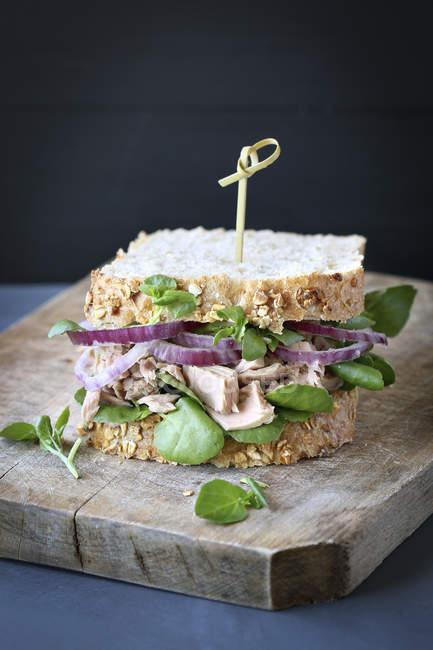 Thunfisch-Sandwich mit roten Zwiebeln — Stockfoto