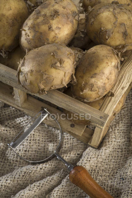 Young ripe potatoes in wooden crate — Stock Photo
