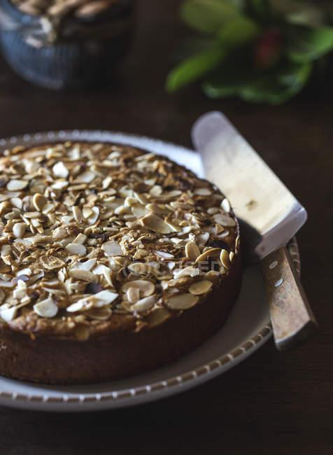 Ricotta Und Mandel Polenta Kuchen Kostliche Ernahrung Stock