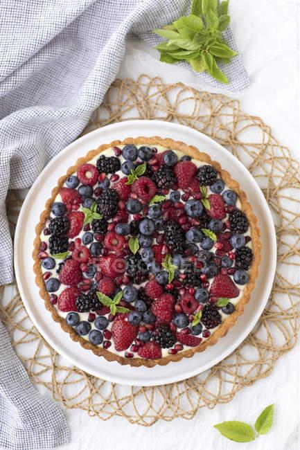 Tarta de baya de verano - foto de stock