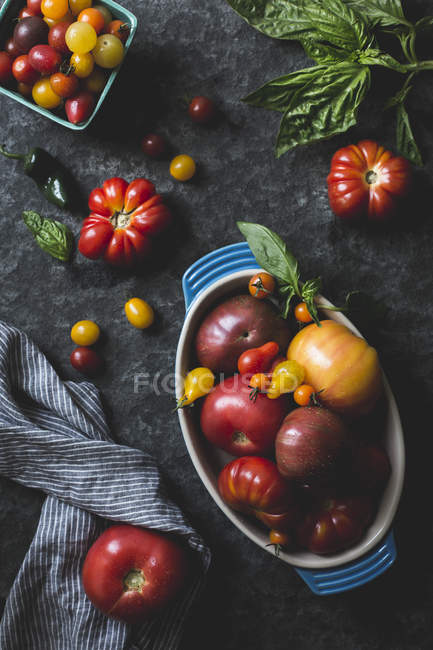 Various sizes and colours of Tomatoes - foto de stock