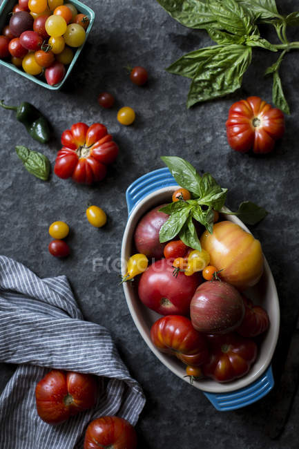 Varios tamaños y colores de tomates - foto de stock