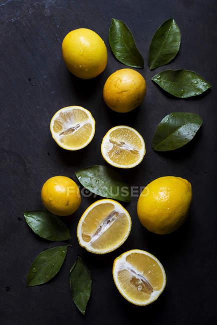 Limões frescos e folhas verdes — Fotografia de Stock