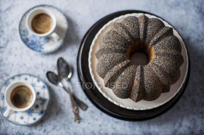 Lime poppy seed cake — Stock Photo