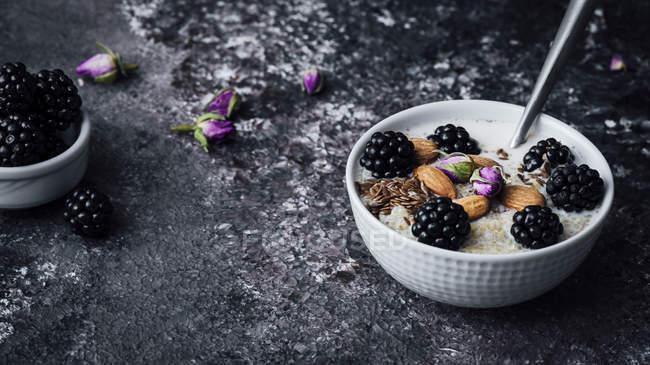 Ciotola da colazione quinoa BlackBerry — Foto stock