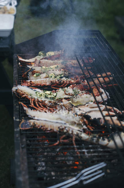 Свежих омаров на гриле — стоковое фото