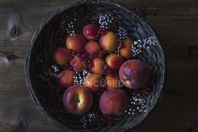 Albaricoques, nectarinas y grosella - foto de stock
