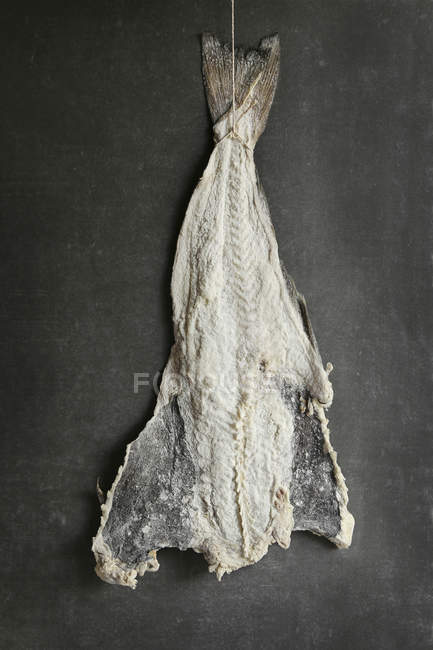 Salted cod fish — Stock Photo