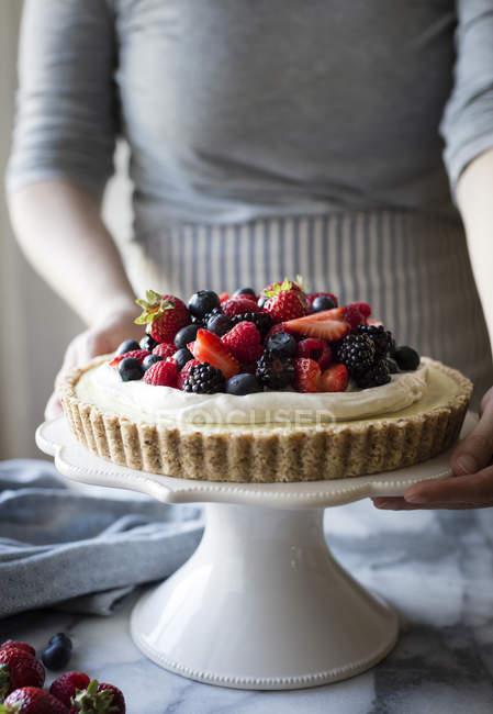 Crostata di crema di limone Berry cocco — Foto stock