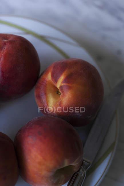 Pesche fresche sulla zolla bianca — Foto stock