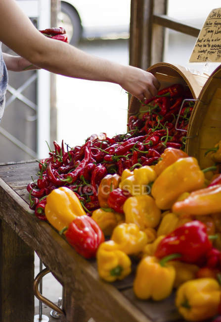 Woman buying chilli peppers — Stock Photo