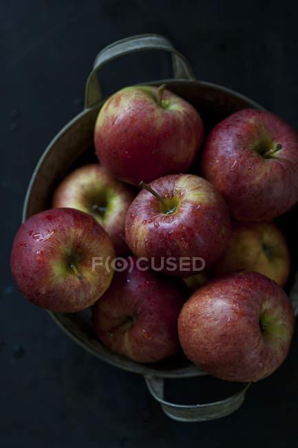 Свежие сорванные яблоки — стоковое фото