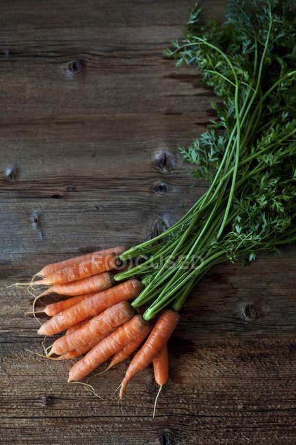 Manojo de zanahorias frescas - foto de stock