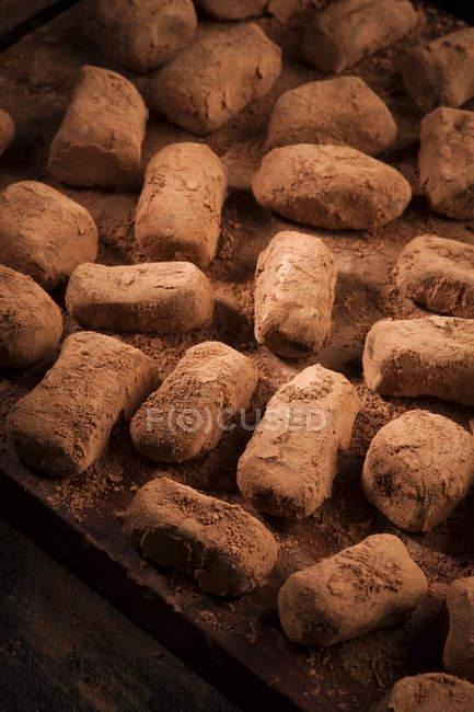 Trufas de chocolate en polvo de cacao - foto de stock