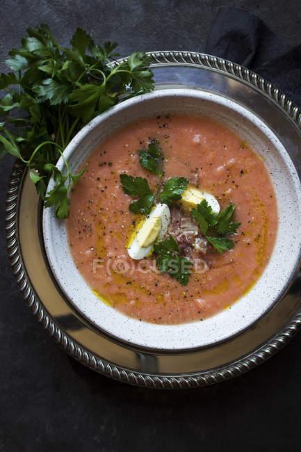 Salmorejo Chilled Tomato Soup — Stock Photo