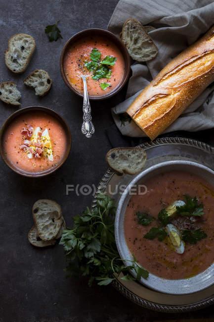 Soupe aux tomates aux croûtons, servie avec du lard, des oignons, des herbes et des épices. sur fond sombre. — Photo de stock
